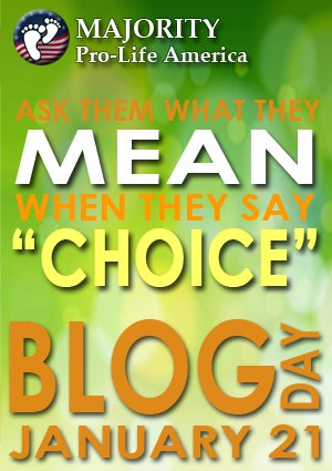 [Blog for prolife day banner]